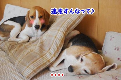 添い寝 5