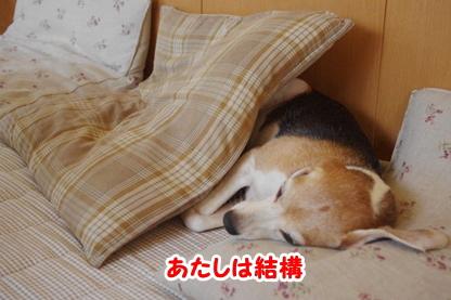 添い寝 4