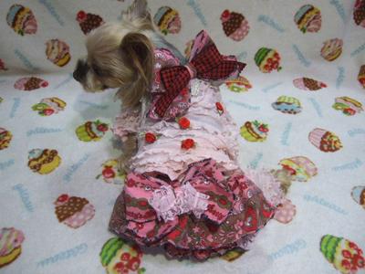 buro11_20120816044719.jpg