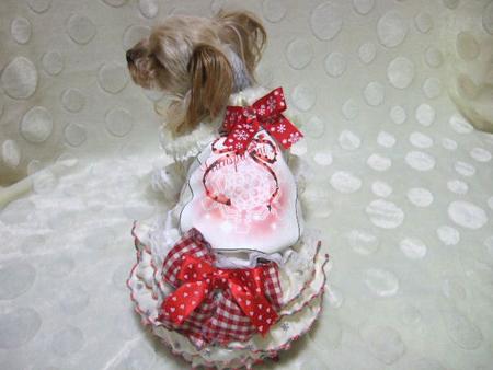 buro12_20121127232147.jpg