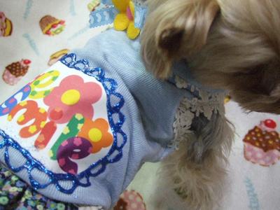 buro24_20120223104620.jpg
