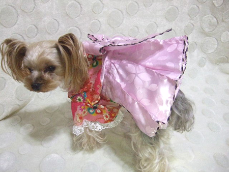 buro5_20121125215607.jpg
