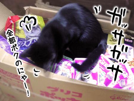 物資2013.3.6②