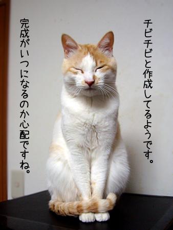 いもちゃ2013.3.31