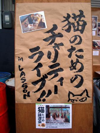 ライブ2014.12①