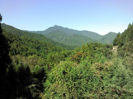 kamiyamasunday2