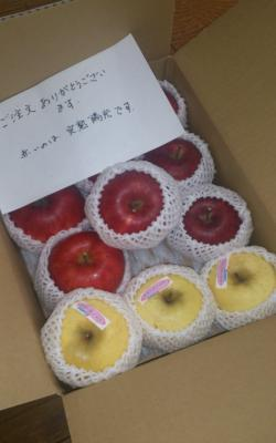 apple_convert_20131108140915.jpg