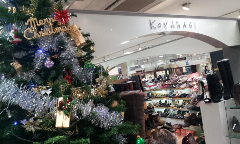 コヤナギのクリスマスツリー