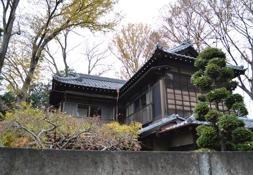 武蔵小金井1 (132)_R