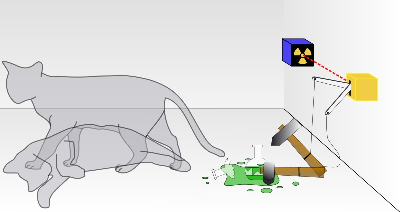 Schrodingers_cat.jpg