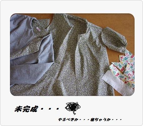IMGP3057_20130426201247.jpg