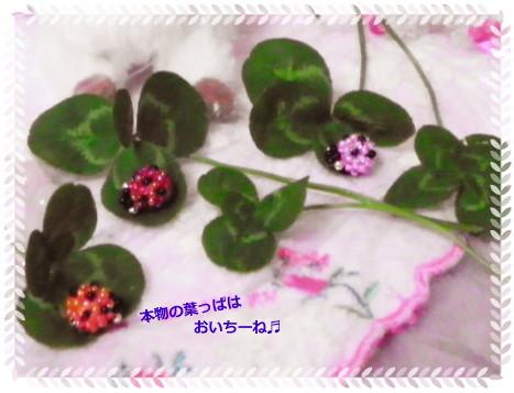 花ブ2013519-3