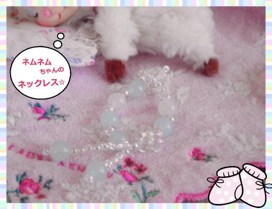花ブ2013521-1