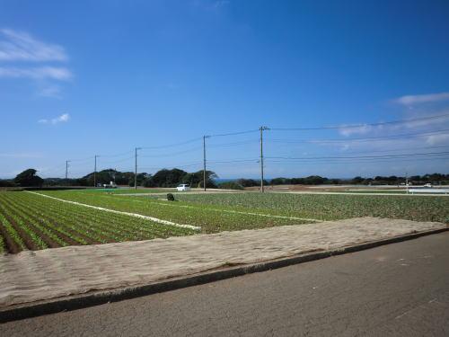 20130929_misaki_8