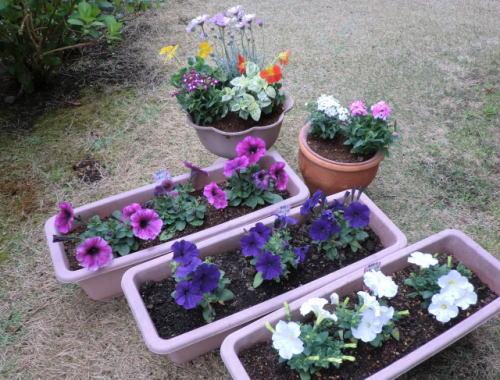 gardening_20130331_2