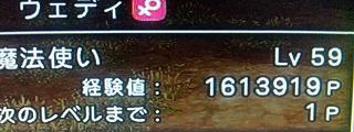 ds261.jpg