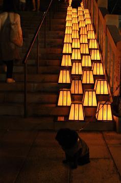 階段と灯篭