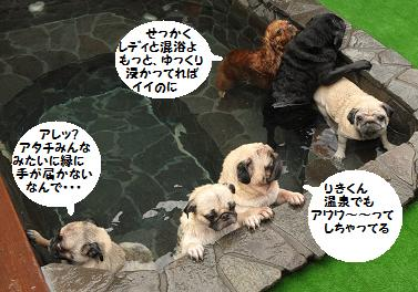 混浴だよ~