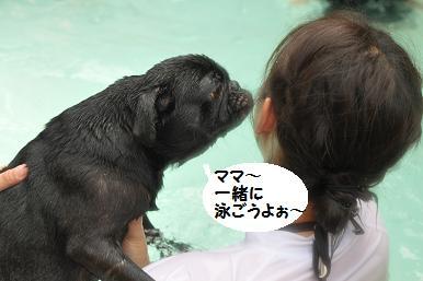一緒に泳ごう~