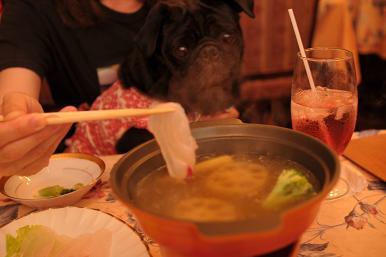 スープフォンヂュ