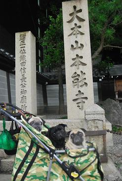 本能寺にて