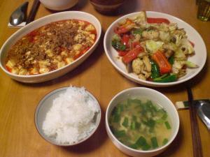 麻婆豆腐と五目野菜炒め