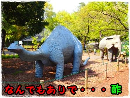 恐竜だぁ~