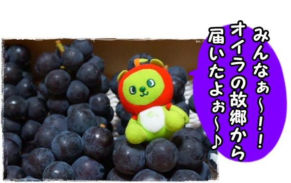 山梨×長野○