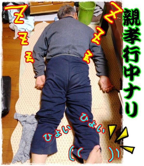 2012-09-28親孝行ひょいひょいっ!