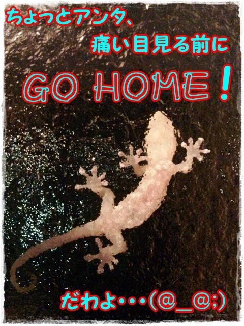 2012-22-20窓の外!