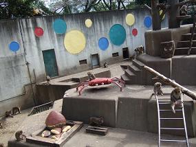羽村市動物公園(サルカニ合戦)