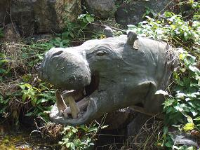 羽村市動物公園(カバ)