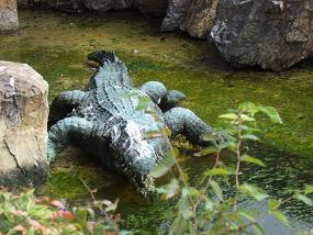 羽村市動物公園(ワニ)