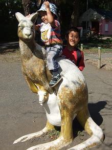 羽村市動物公園(カンガルー)