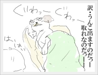 guwa-----1.jpg