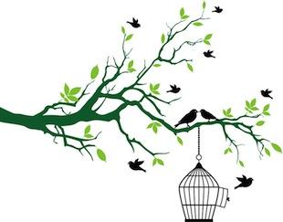 鳥かご自由(ブログ用)