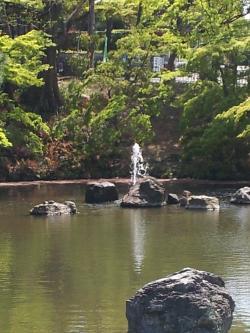 円山公園 池2