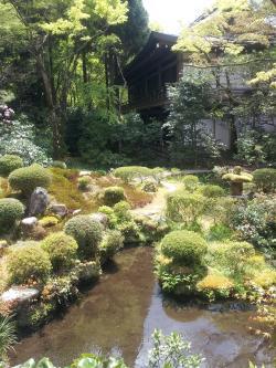 三千院 庭園内3