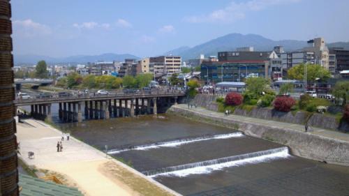 新緑の鴨川