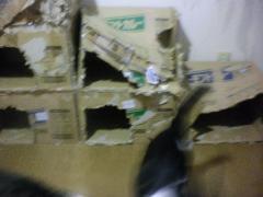 SANY0072_convert_20110827191537[1]
