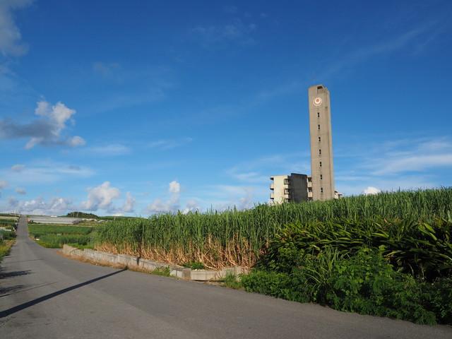 沖縄県営大頓団地とサトウキビ畑