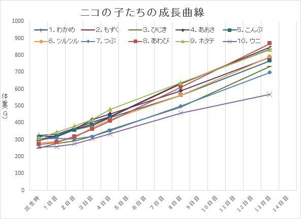 ニコの子たち成長曲線