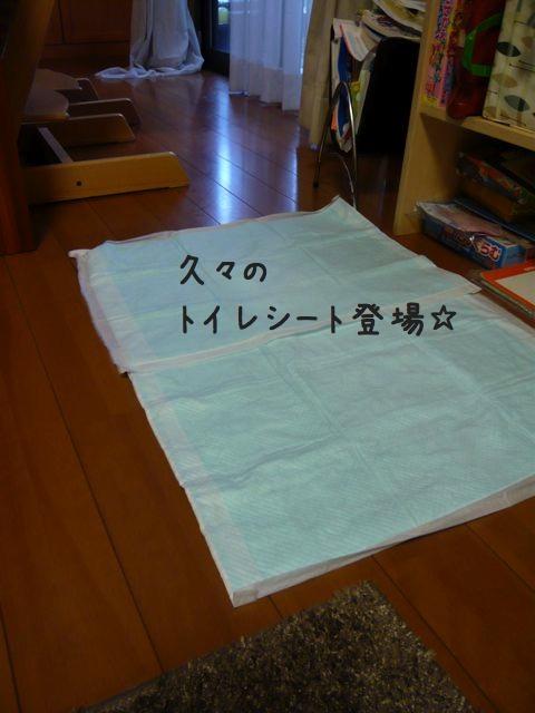 台風の2x