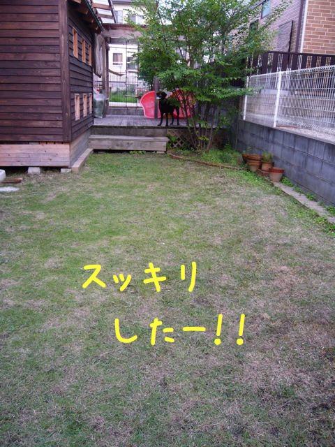 草刈り8x