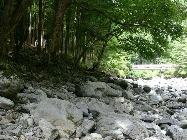 吉野川遊び6