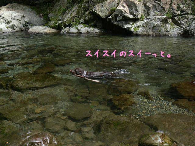 吉野川遊び5x