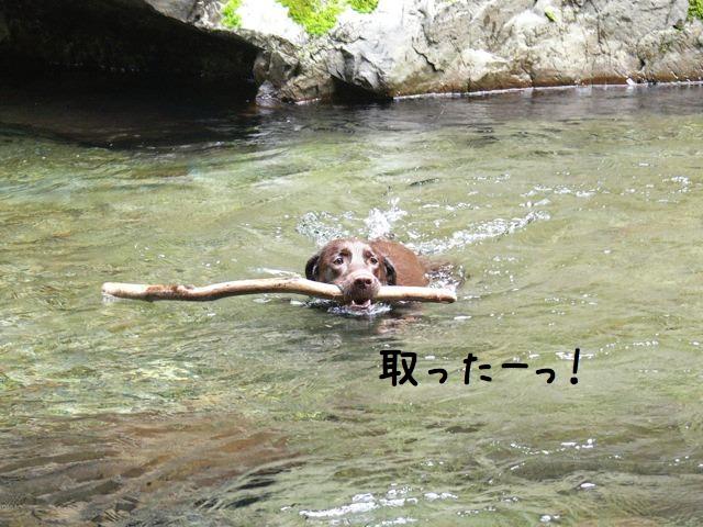 吉野川遊び1x