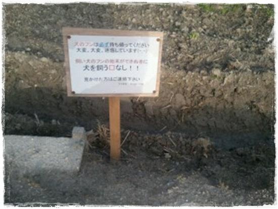 2013.3散歩3