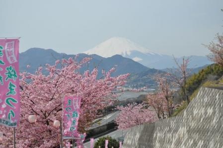 まつだー富士山