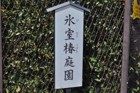氷室椿庭園ー看板